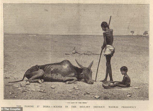 هشدار درباره تکرار خشک سالی و قحطی قرن 19 با 50 میلیون مرگ ومیر
