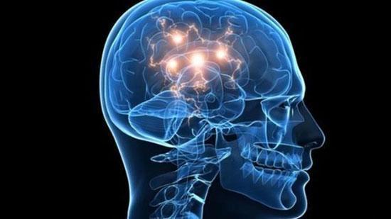 شش باور نادرست درباره مغز