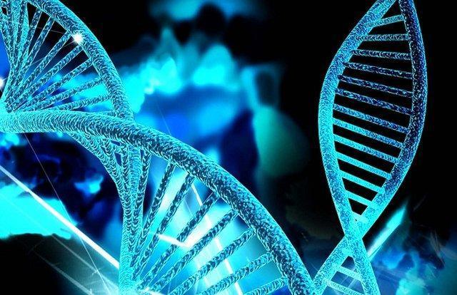امکان تشخیص 400 نوع بیماری ژنتیکی در کشور، به حداقل ها بسنده نشود